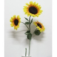 GIRASOLE X 3 ECO ART.26483